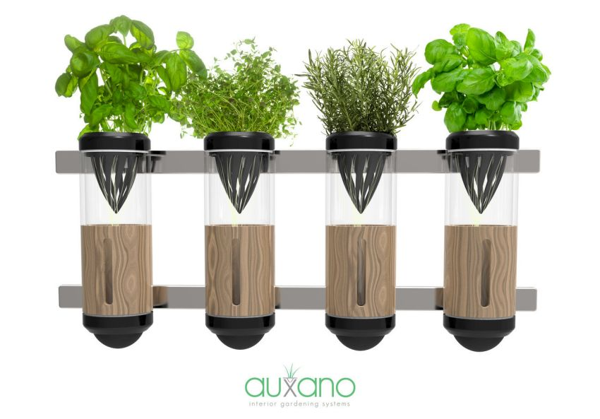 Auxano Hydrophonic Vegetable and Herb Grower