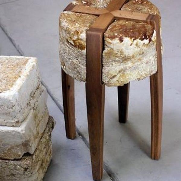 Designer creates furniture pieces out of mushrooms!