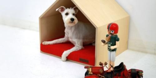 mpup's PET house