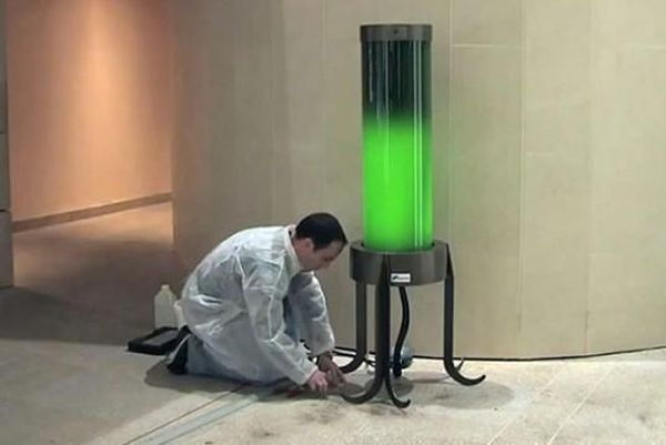 Living microalgae lamp by French Biochemist