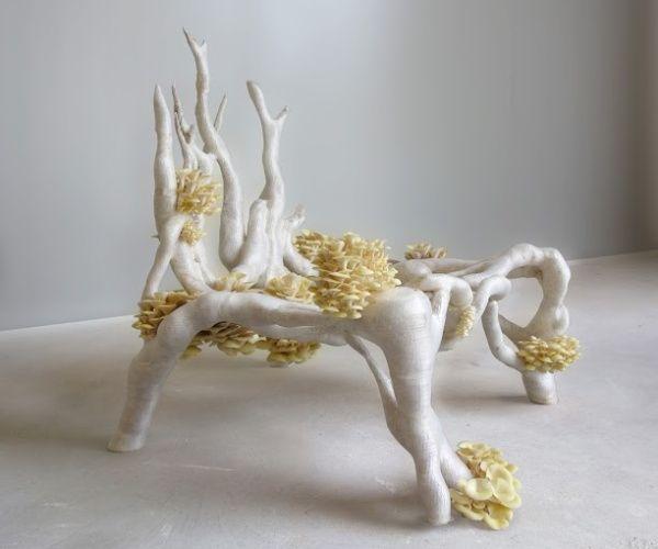 3D printed Mycelium chair