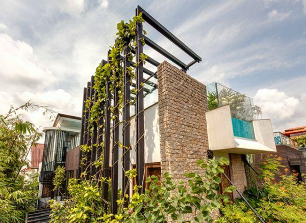 Garden Villa by Aamer Architects