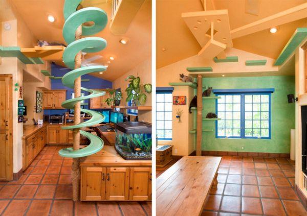 California Cat House
