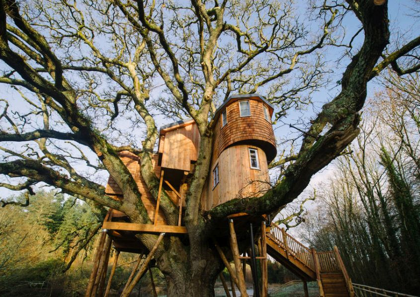 Treetops Treehouse is Built Within Branches of a 250-Year-Old Oak Tree