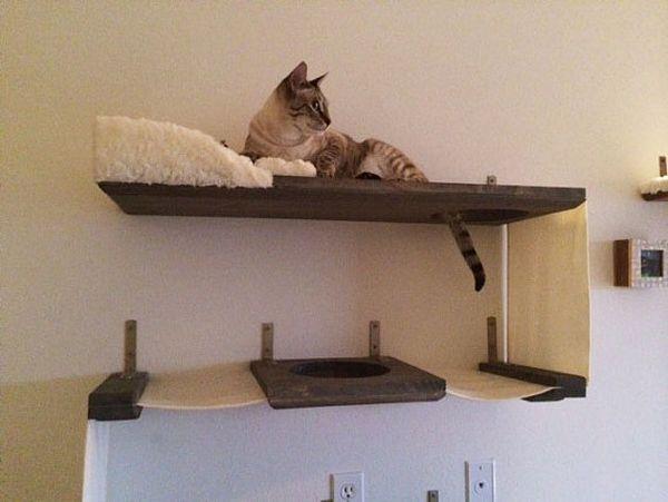 Tri-level Mini Apartment Cat by CatastrophiCreations