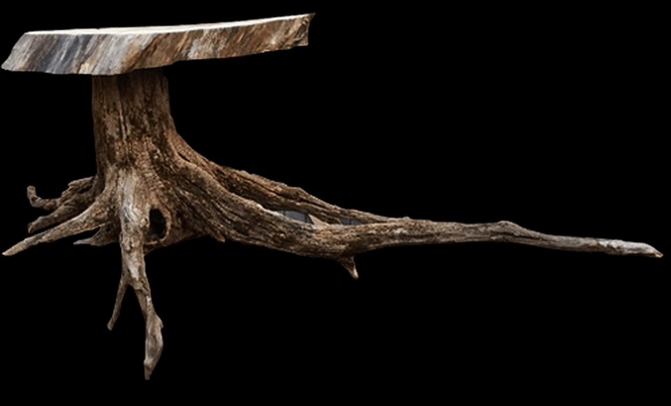 Two local men revamp fallen wood limbs into remarkable furniture