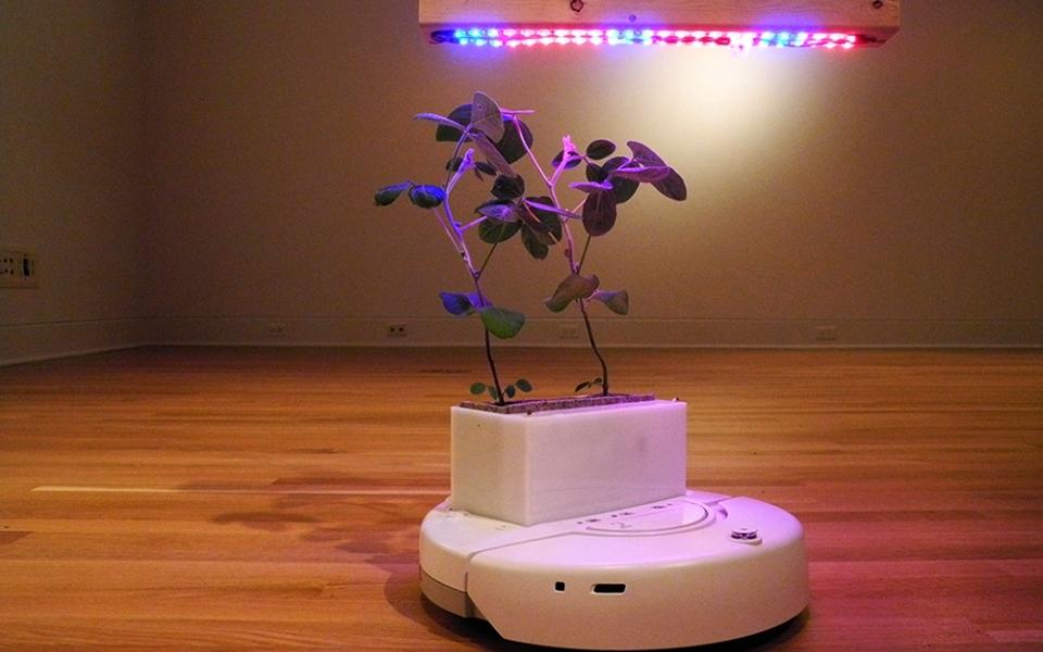 Soybots Mobile Robotic Platforms