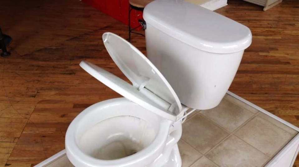 Flush Down Toilet Seat Closer by Thomas Reminga