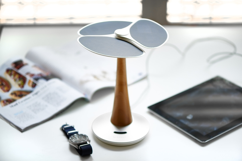 Ginkgo Solar Tree Charging Station