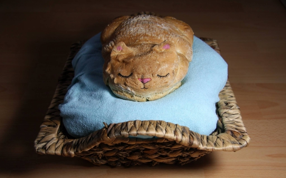 Catloaf by Lou Lou P