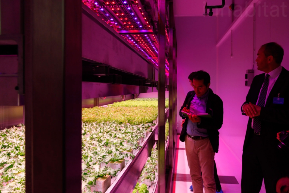 Philips GrowWise City
