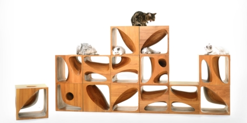 CATable 2.0 by LYCS LYCS Architecture