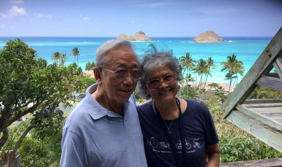 Hawaiian Treehouse