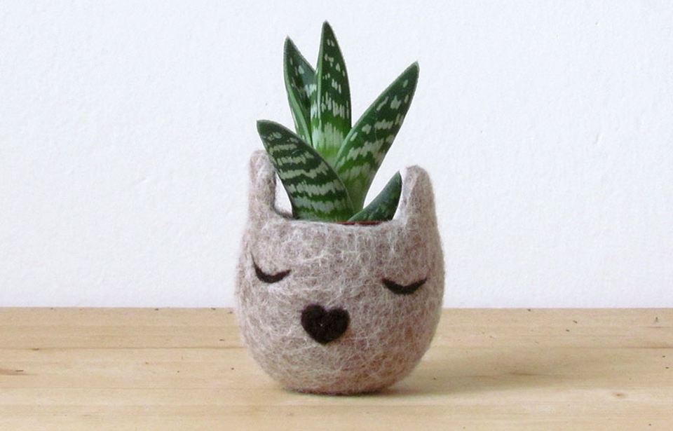 These Cat Head Succulent Planters are Really Adorable