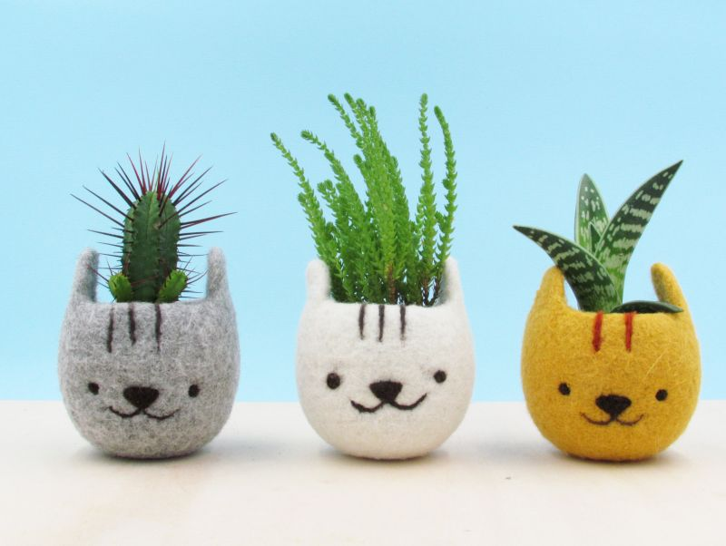 The Yarn Kitchen Cat Head Succulent Planters are Really Adorable