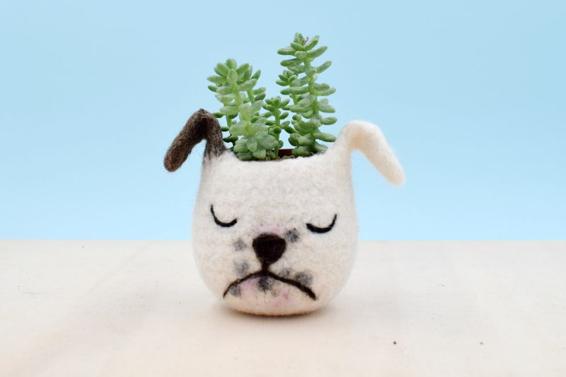 The Yarn Kitchen Animal Succulent Planters are Really Adorable