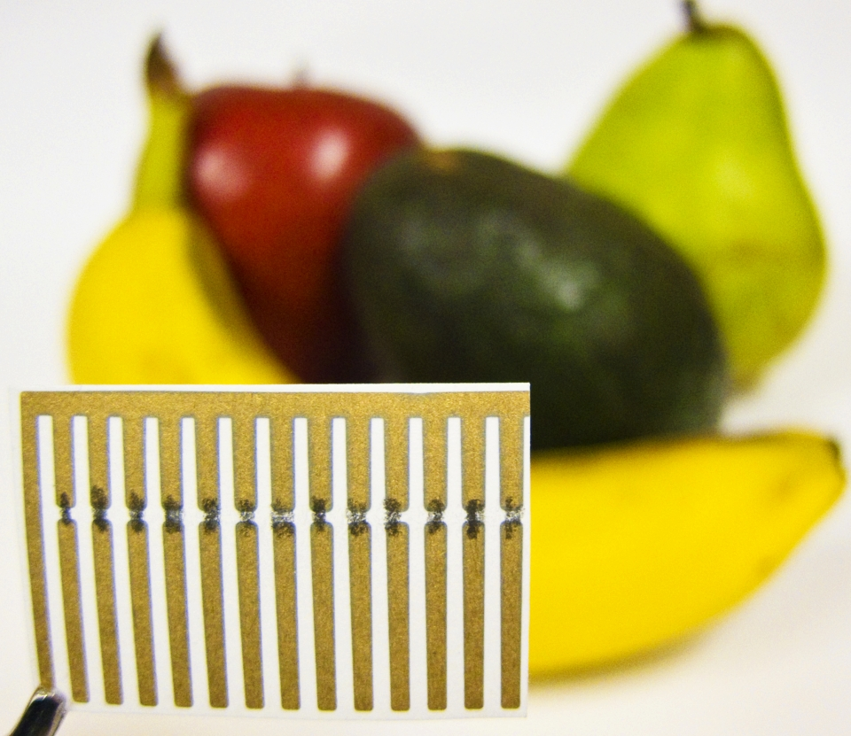 C2Sense's artificial nose smells your food to avoid rotten produce