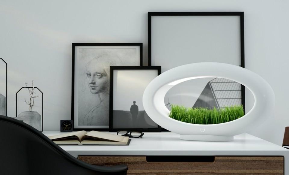 Marko Vuckovic's Grasslamp
