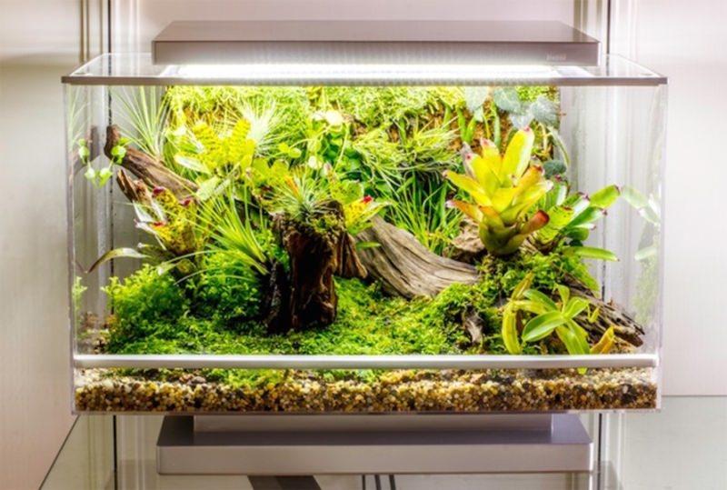 Biopod World's First Smart Microhabitat