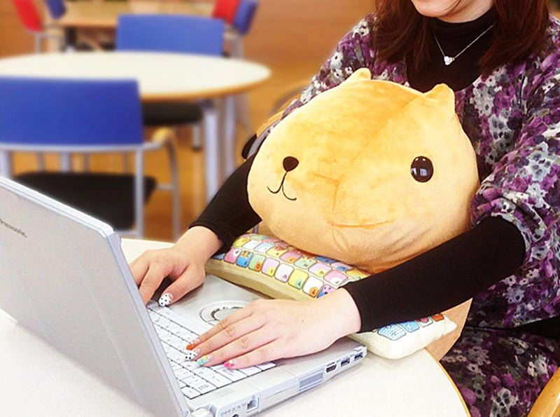 PC Character Cushions