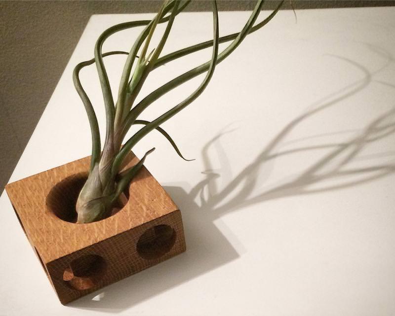 PlantBlock