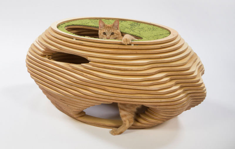 Cat shelters for chairty