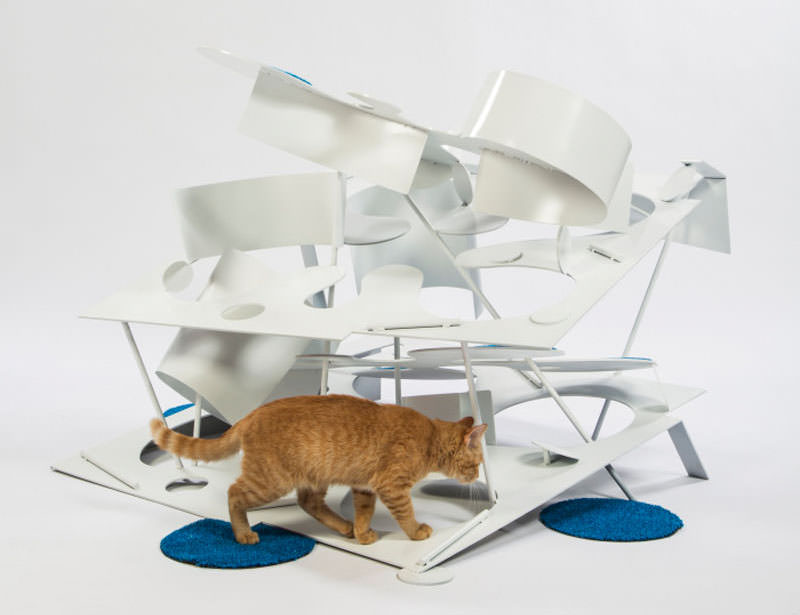 Cat shelter for chairty