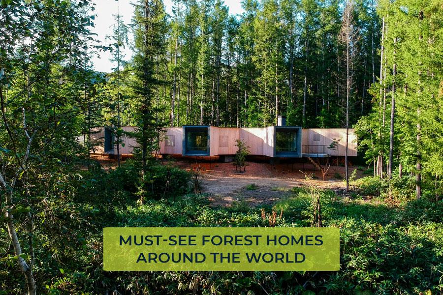 Best-Forest-Homes-around-the-world