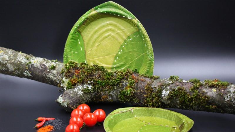 Leaf Plates and Tableware