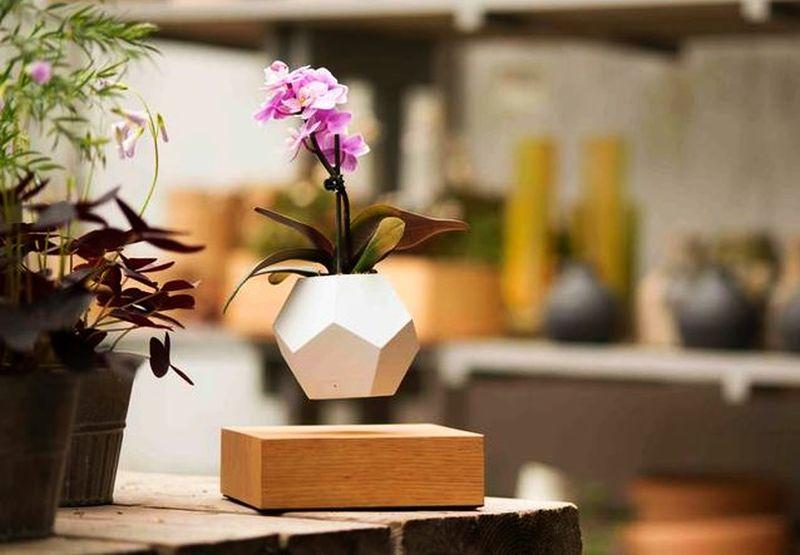 Lyfe magnetic planter