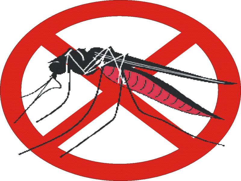 we need to eliminate all mosquito-borne diseases