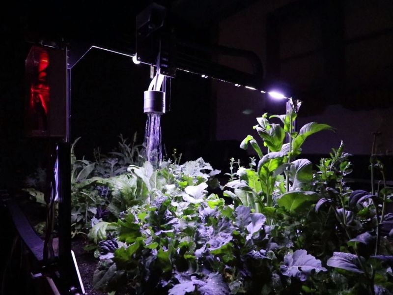 Add features such as lighting for get best planting conditions