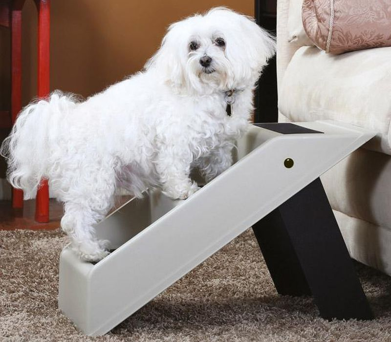 Handy foldable pet step_1