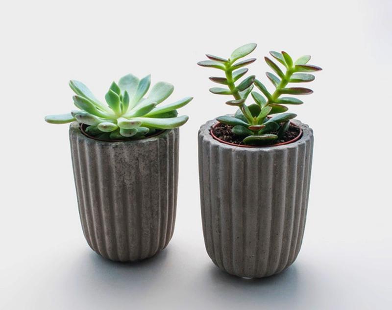 Concrete Pot Planter