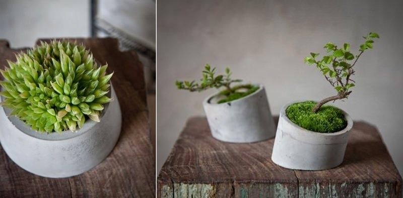 Concrete planters by Shenme Design