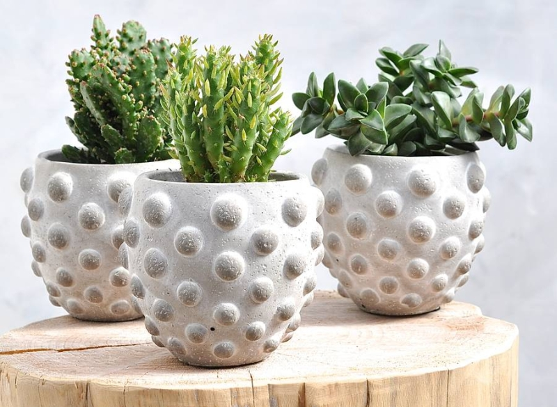 Textured Planter for home