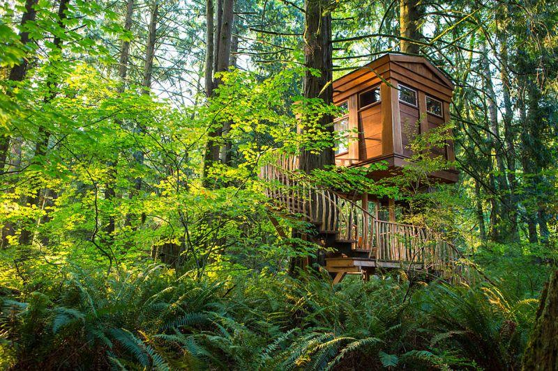 Bonbibi Treehouse at Treehouse Point_2