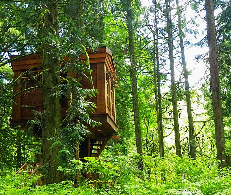 Bonbibi Treehouseat Treehouse Point_4