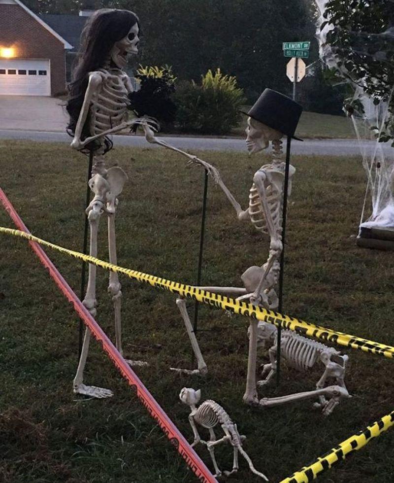 Mr. Bones proposing her beloved