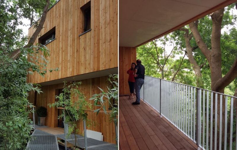 Larch wood cladding in exteriors
