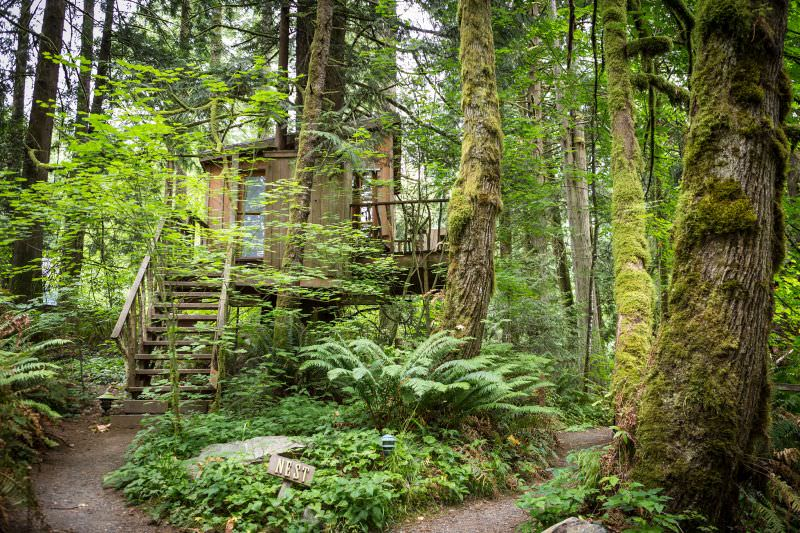 Nest Treehouse at Treehouse Point_1