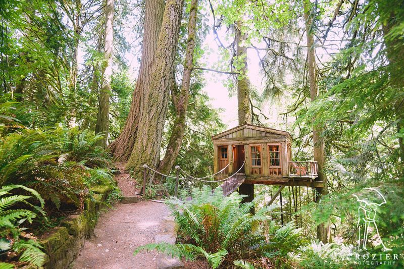 Temple of the Blue Moon at Treehouse Point_1