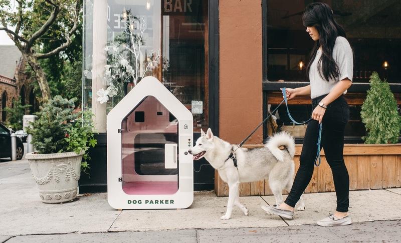 dog-parker