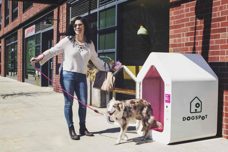 DogSpot/ dog parker