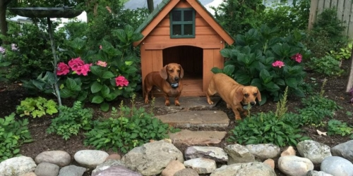 Give your pooch some personal space with a chic doghouse