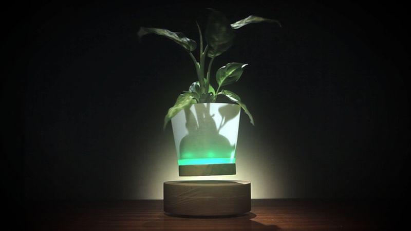 Levitate your flower vases