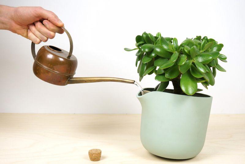 self-watering-flowerpot