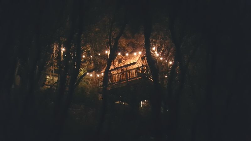Nigh view of the mini treehouse