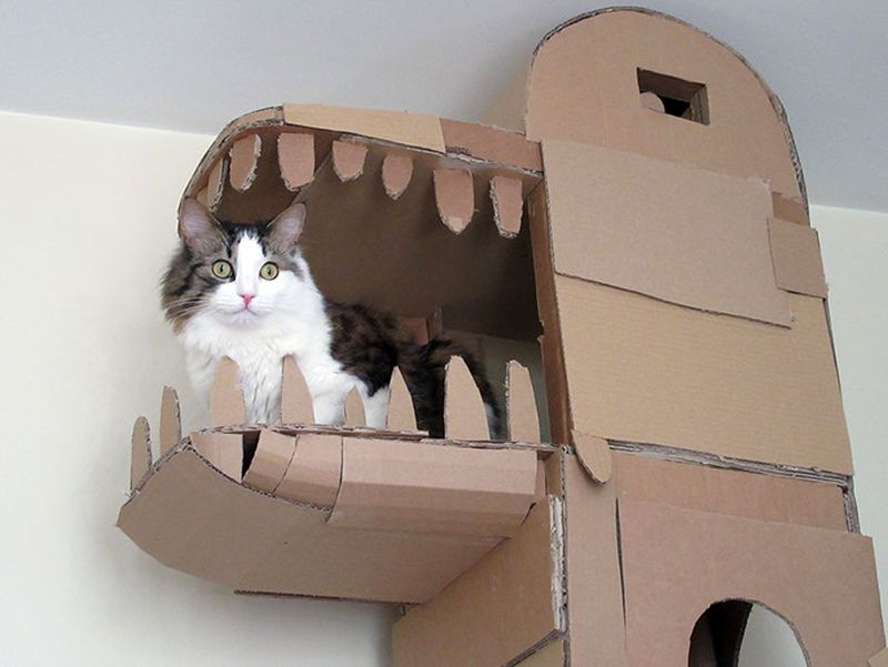 Amazing hideout for the cat