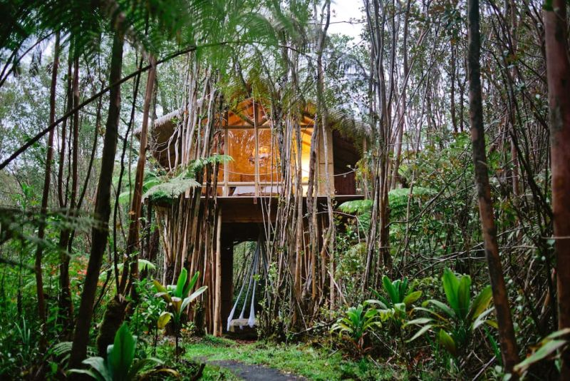 Tropical treehouse in Hawaii